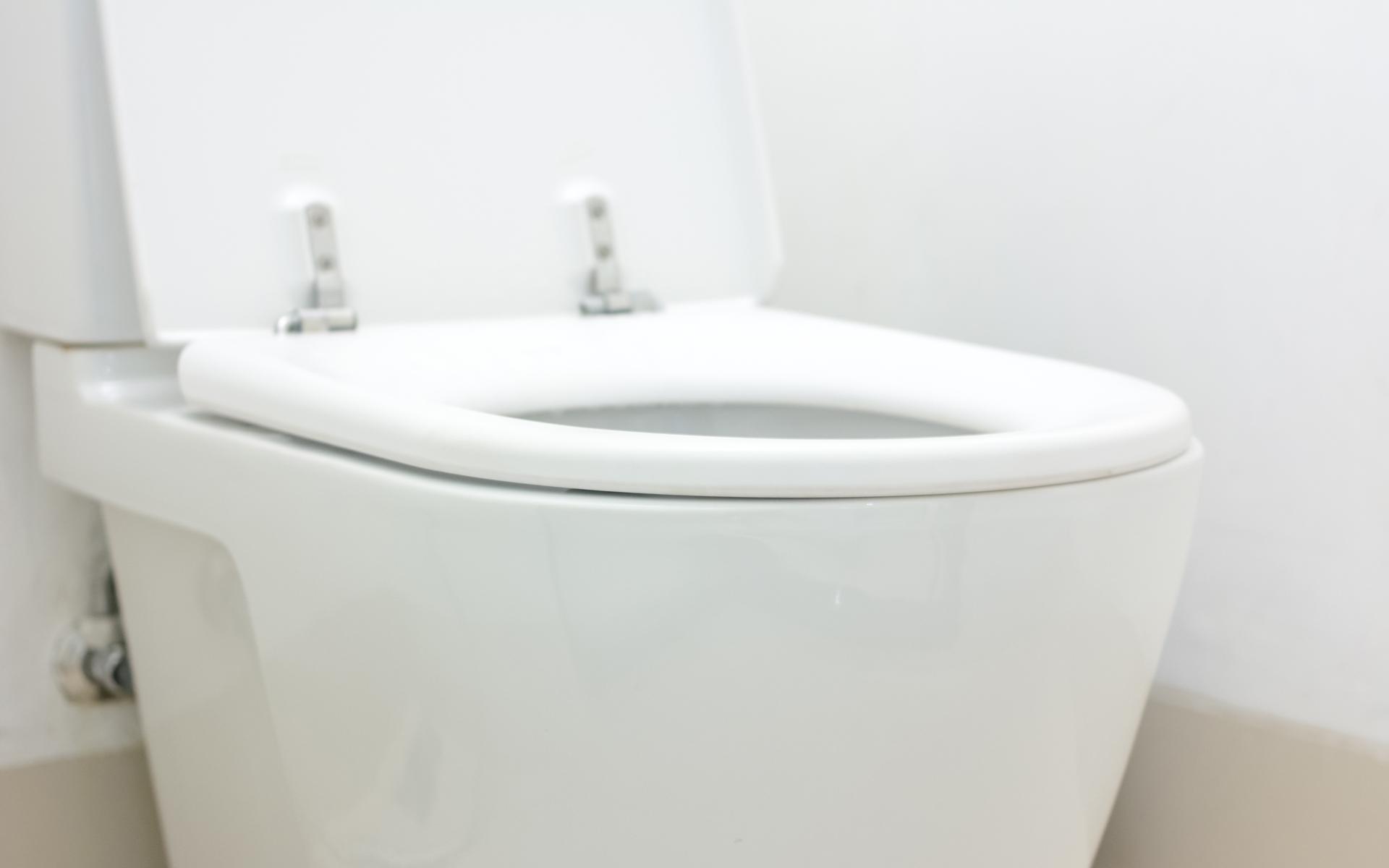 Salmon Arm Toilet Repair